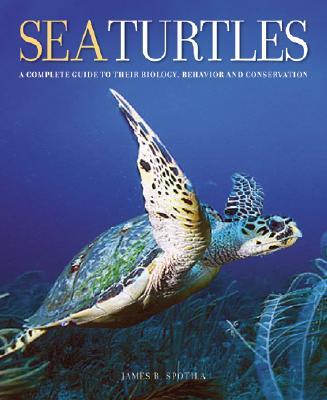 Sea Turtles By Spotila, James R.